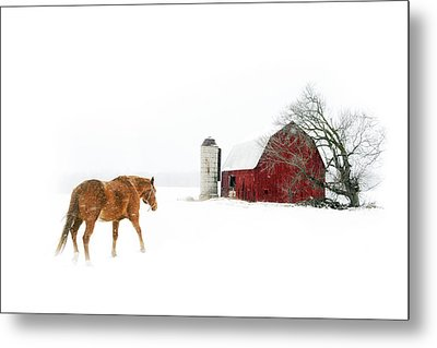 Going Home Metal Print by Ann Lauwers