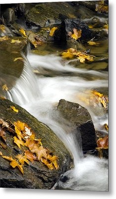 Going With The Flow Metal Print by Christina Rollo