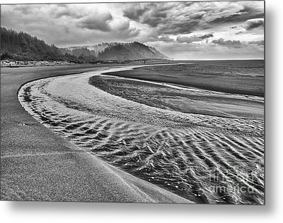 Gold Bluffs Beach Is Located In The Prairie Creek Redwoods State In Black And White. Metal Print by Jamie Pham