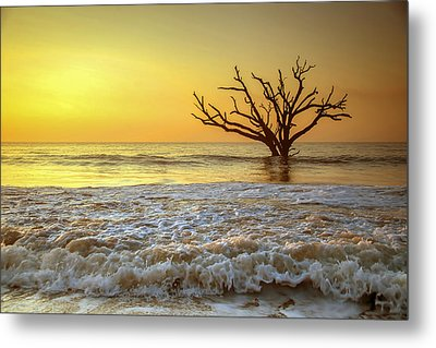 Gold Coast Metal Print