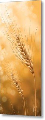 Gold Grain Metal Print by Veronica Minozzi