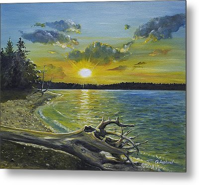 Golden Afternoon At Ketron Island Metal Print