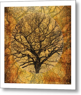 Golden Autumnal Trees Metal Print by Lenny Carter