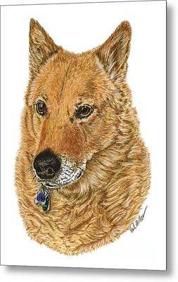 Metal Print featuring the drawing Golden Beauty by Val Miller