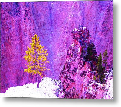 Golden Christmas In Yellowstone Metal Print by Ann Johndro-Collins