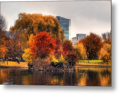Golden Common Metal Print by Joann Vitali