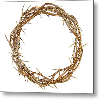 Golden Crown Of Thorns Metal Print by Allan Swart