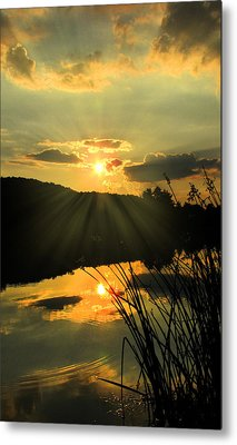 Golden Day Metal Print by Cindy Haggerty