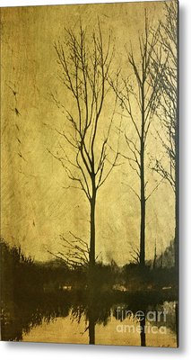 Golden Metal Print by Deborah Talbot - Kostisin