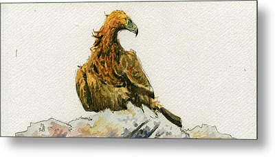 Golden Eagle Aquila Chrysaetos Metal Print by Juan  Bosco