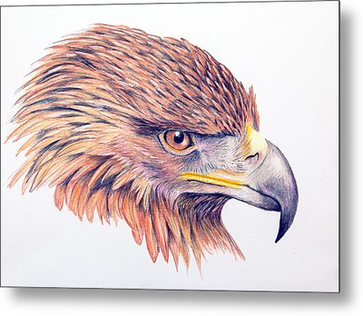 Golden Eagle Metal Print by Mary Mayes