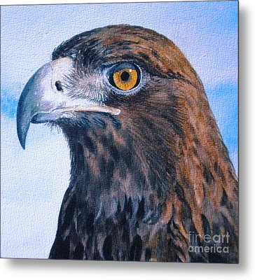 Golden Eagle Metal Print by Sandra Phryce-Jones
