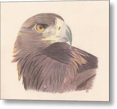 Golden Eagle Study Metal Print by Sheila Byers