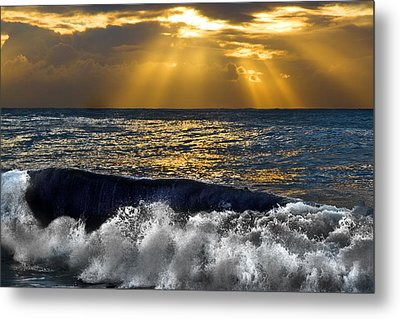 Golden Eye Of The Morning Metal Print by Miroslava Jurcik