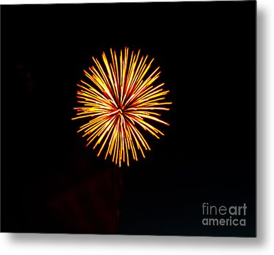 Golden Fireworks Flower Metal Print by Robert Bales