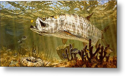 Golden Fly Tarpon Metal Print by Don  Ray