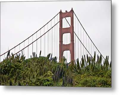 Golden Gate Bridge 1 Metal Print by Shane Kelly