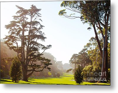 Golden Gate Park San Francisco Metal Print by Artist and Photographer Laura Wrede