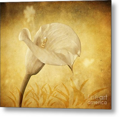 Golden Glow Cala Lily Metal Print by Shirley Mangini