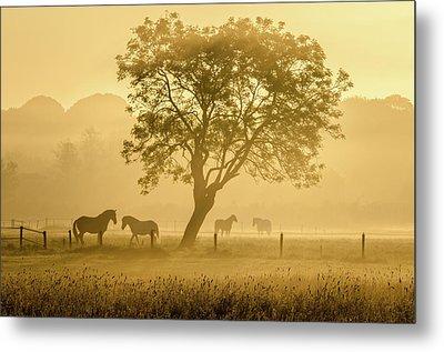 Golden Horses Metal Print