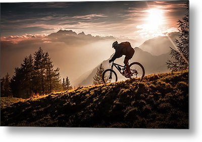 Golden Hour Biking Metal Print by Sandi Bertoncelj