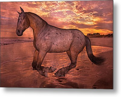 Golden Hour Pause Metal Print by Betsy Knapp