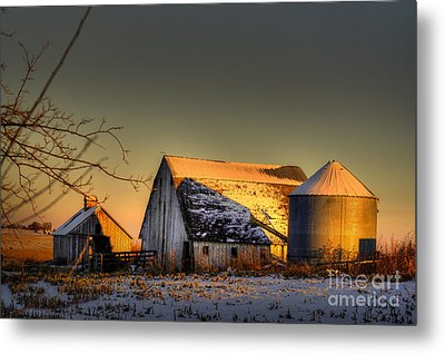 Golden Hour Metal Print by Thomas Danilovich