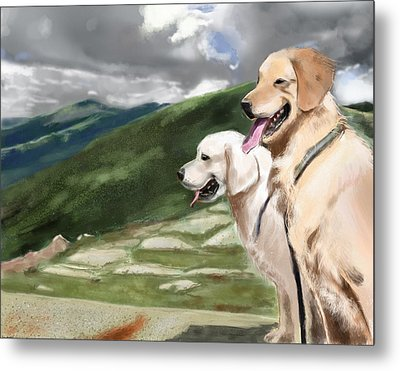 Golden Lab Metal Print by Eric Smith