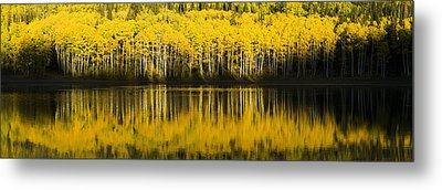 Golden Lake Metal Print by Chad Dutson