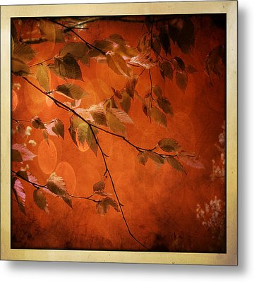 Golden Leaves-1 Metal Print by Nina Bradica
