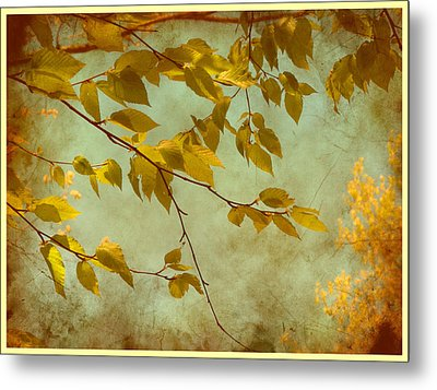 Golden Leaves-2 Metal Print by Nina Bradica
