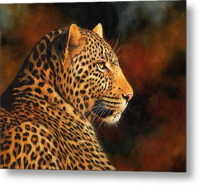 Golden Leopard Metal Print by David Stribbling