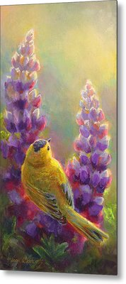 Golden Light 1 Wilsons Warbler And Lupine Metal Print by Karen Whitworth