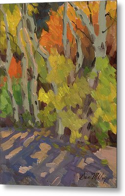 Golden Light And Shadow Metal Print by Diane McClary