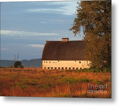 Golden Light At Nisqually Wildlife Refuge Metal Print by Gayle Swigart