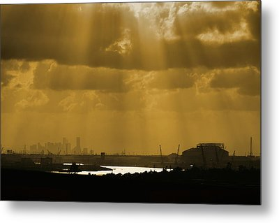 Golden Light Metal Print by Linda Unger