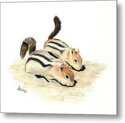 Golden-mantled Ground Squirrels Metal Print by Lynn Quinn