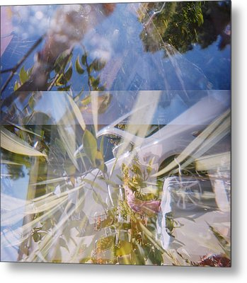 Golden Mean Holga Garden 1 Metal Print