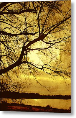Golden Pond Metal Print by Ann Powell