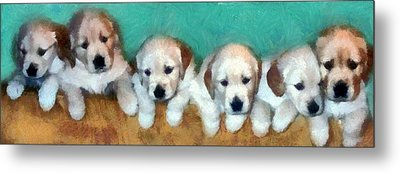 Golden Puppies Metal Print
