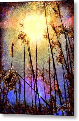 Golden Sun Rays On Beach Grass Metal Print by Janine Riley
