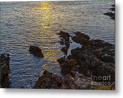 Golden Reflection Metal Print by Brian Roscorla