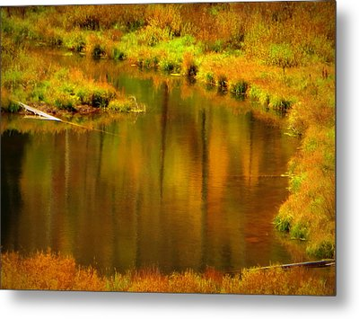 Golden Reflections Metal Print