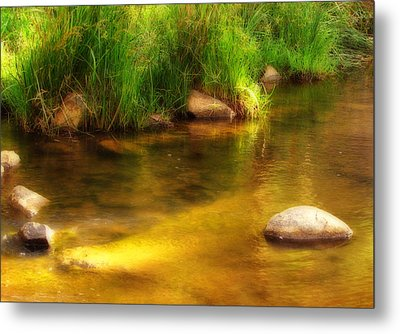 Golden Reflections Metal Print by Michelle Wrighton