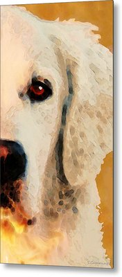 Golden Retriever Half Face By Sharon Cummings Metal Print by Sharon Cummings
