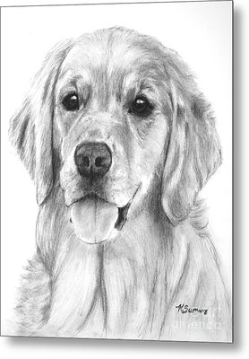 Golden Retriever Jessie Adult Metal Print