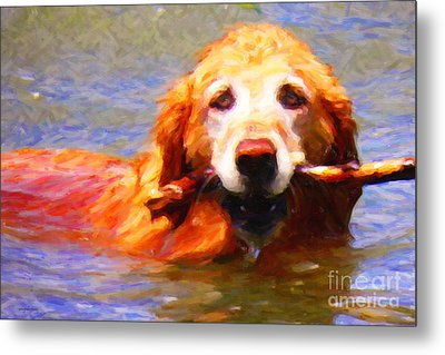 Golden Retriever - Painterly Metal Print by Wingsdomain Art and Photography