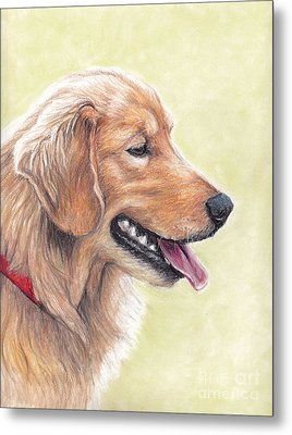 Golden Retriever Profile Metal Print by Charlotte Yealey