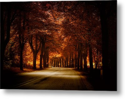 Golden Road Metal Print by Marek Czaja