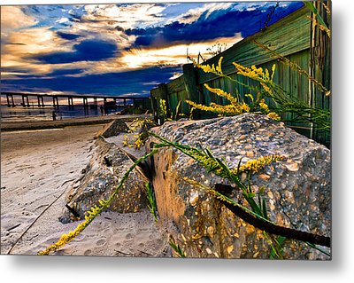 Metal Print featuring the photograph Golden Rod Sunset Wooden Fence Yellow Wildflowers Blue Green Art by Eszra Tanner